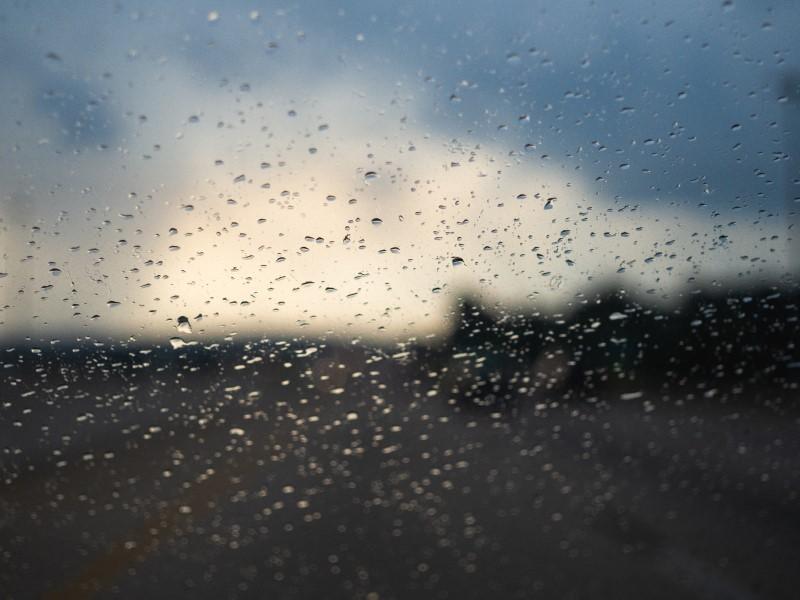 Geryll Zehr: Through the Rain